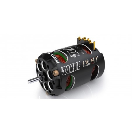 Team Zombie 21.5T PRO stock motor